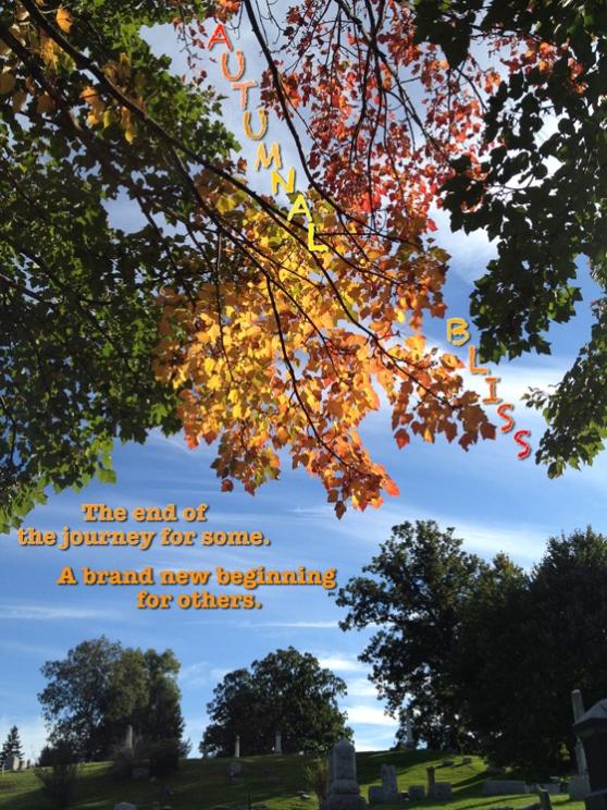 AutumnalBlissPiece